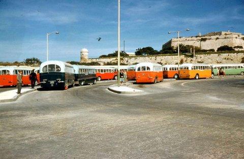 bus colors