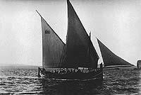 gozoboat3