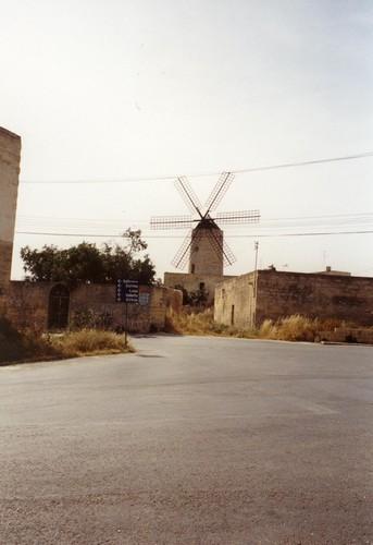 Zurrieq Xarolla2