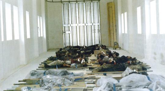 Egyptair_boeing_737_hijacked_luqa-2025_11_1985-7